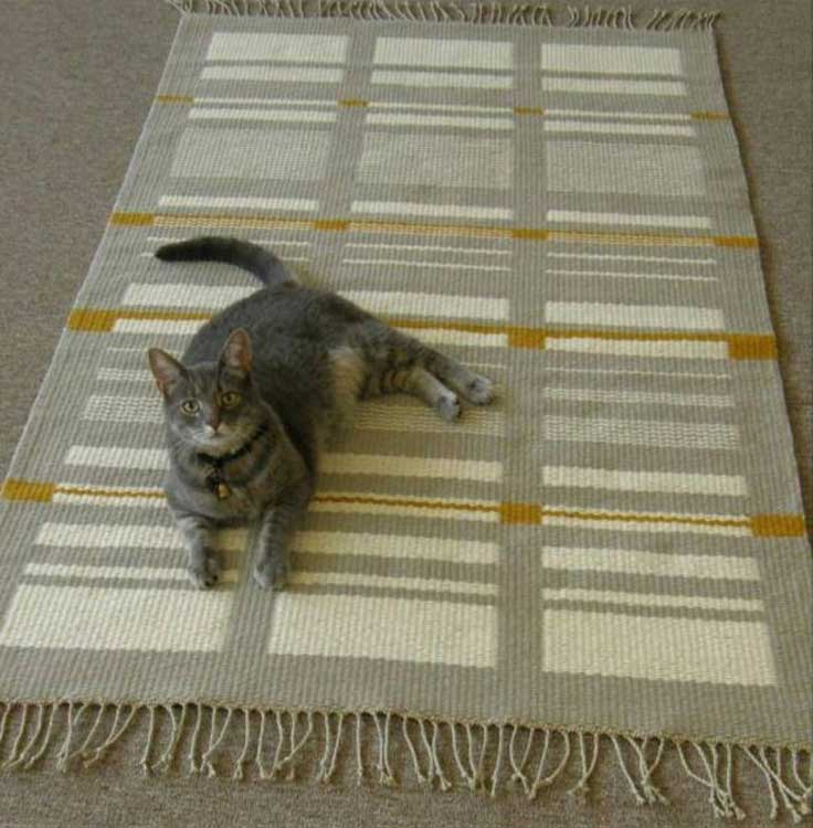 Image result for  cats on carpets floors pinterest